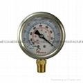 Vacuum Pressure Gauge 3