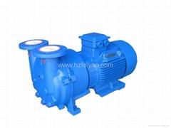 2BV5110 water ring vacuum pump