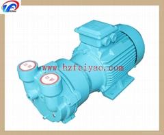 2BV2061 water ring vacuum pump