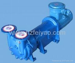 2BV6110 explosion proof water ring vacuum pump