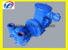 2BV2060-EX water ring Vacuum Pump