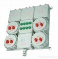 防爆照明動力配電箱 1