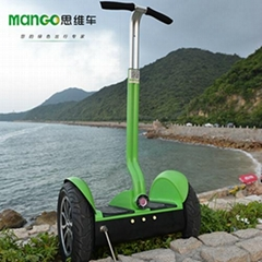 17inch 2 Wheels Self-balancing Vehicle