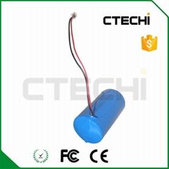 Lithium battery ER34615-19Ah