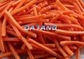 frozen carrot sliced