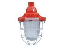 FZR-B系列防爆防腐照明燈具