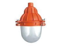 ZB-D系列防水防塵防腐照明燈具