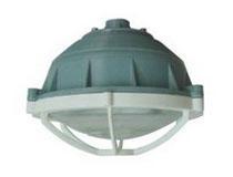 FZR-G系列防爆防腐環形(應急)熒光燈