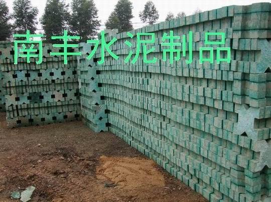 廣西南寧植草磚 1