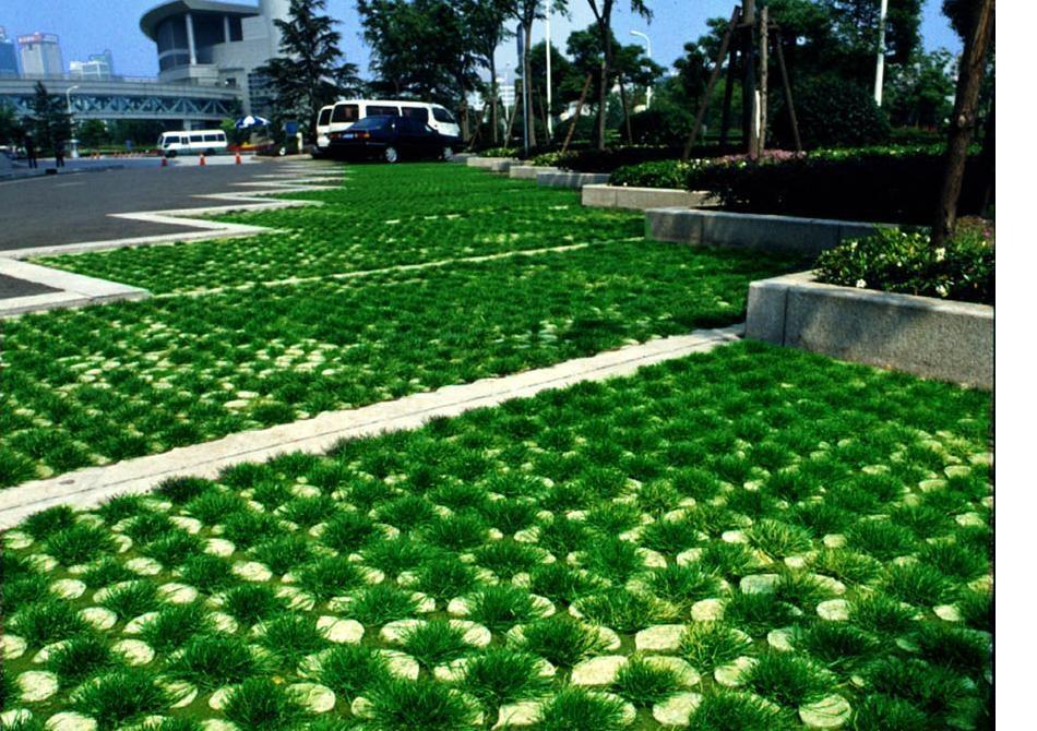 廣西南寧植草磚 4