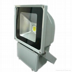 free sample LED FLOOD LIGHT with meanwell power supply and bridgelux LED chip