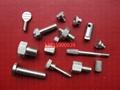 不鏽鋼非標螺栓  3