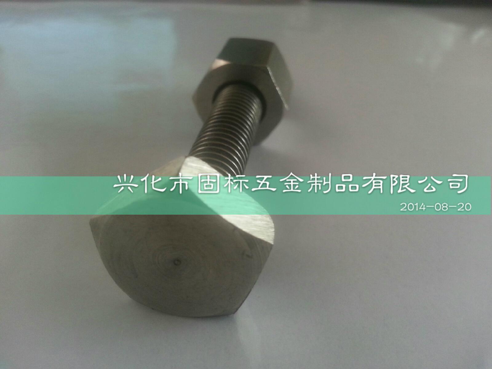 不鏽鋼防盜螺絲 5