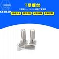 不鏽鋼太陽能光伏專用T型螺栓304 2