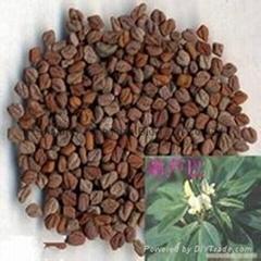 Fenugreek Seed P.E. 4-Hydroxyisoleucine 20% weight control blood glucose protec