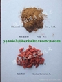 Wolfberry P.E (Goji berry extract) 2
