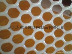 0.6/0.8/1.0/1.2mm孔塑料养鸡网