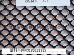 纯白透明0.8-6公分孔塑料养殖网