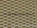 装饰用5*10mm孔小型铝板网 3