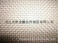0.2-2.5cm孔不锈钢防虫网304/316