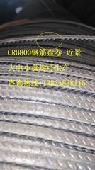 CRB800钢筋