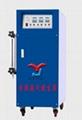 24/36KW电蒸汽发生器 2