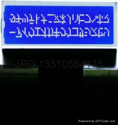 数字收音机LCD模组 1
