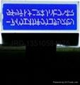 數字收音機LCD模組