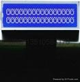 数字收音机LCD模组 2