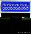 数字收音机LCD模组 4