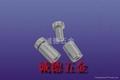 实心不锈钢广告订,优质咨询台装饰螺丝钉 4