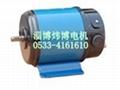 110SZ53直流電機