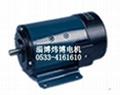 130SZ02直流電機
