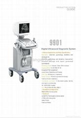 Trolley Portable Digital Ultrasonic Diagnostic Imaging System
