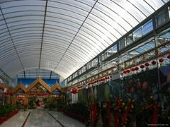 陽光板(溫室花房)