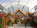 阳光板(生态餐厅)