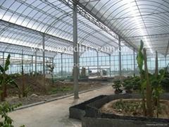 固萊爾陽光板(生態餐廳)