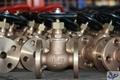 Marine Bronze or Brass Globe valve 5