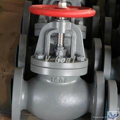 JIS Marine valve Cast Iron Check Globe valve