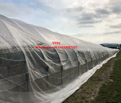 Insect proof screen net