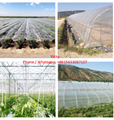 Insect proof screen net 3