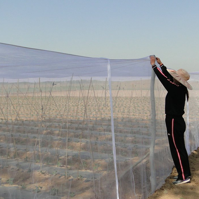 Greenhouse Anti Insect Insect Proof Net Safety Net  2
