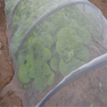 Greenhouse Anti Insect Insect Proof Net Safety Net  3