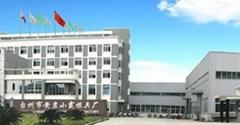 中国小霞模具公司