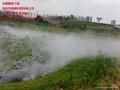 景觀人造霧設備 3