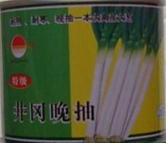 日本大蔥種子