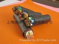 交聯聚乙烯絕緣電力電纜 1