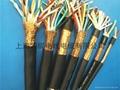 耐高溫耐火控制電纜