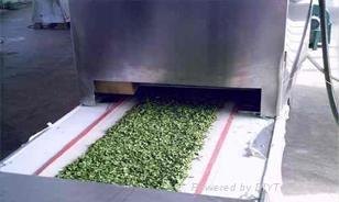 微波蔬菜脱水机  1
