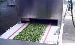 微波蔬菜脫水機